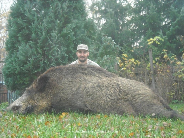 <font color=orange>Germany</font> Germany  European hunting photos  European hunting pictures