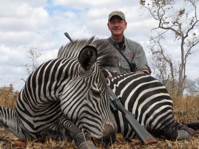 <font color=orange>Grant's Zebra</font> Grant's Zebra  Trophy hunting photos african plains game  hunting pictures plains game