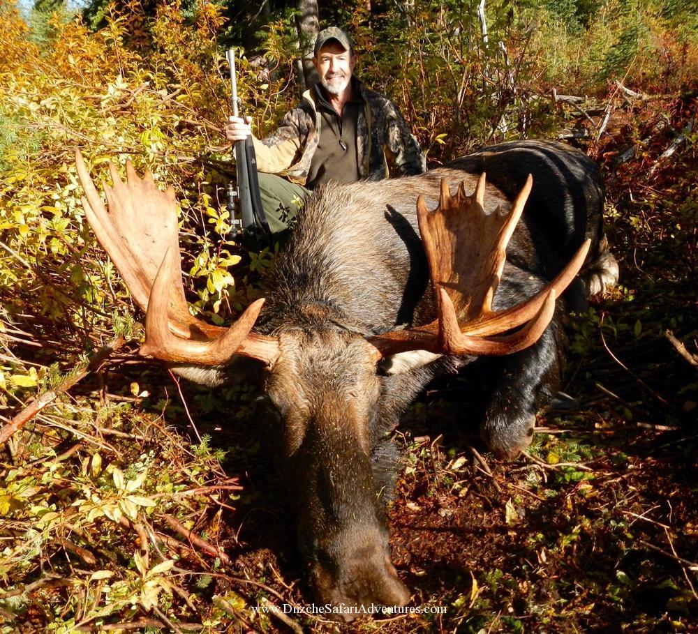<font color=orange>Moose Sept. 2015-B.C.</font> Moose Sept. 2015-B.C.