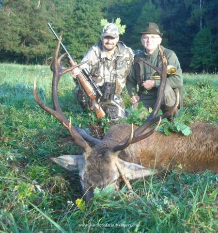 <font color=orange>Red Deer-Poland</font> Red Deer-Poland  European hunting photos  European hunting pictures