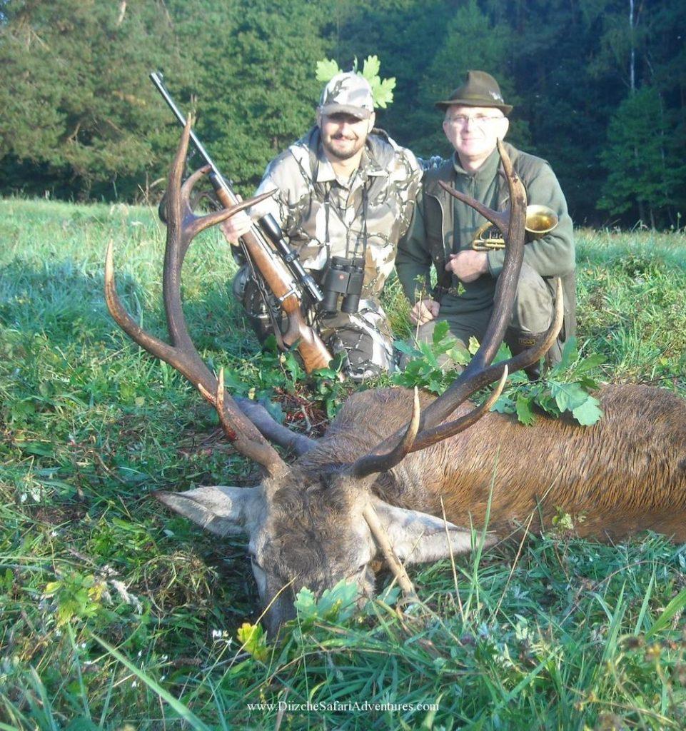 <font color=orange>Red Deer-Poland</font> Red Deer-Poland  European hunting photos  European hunting pictures