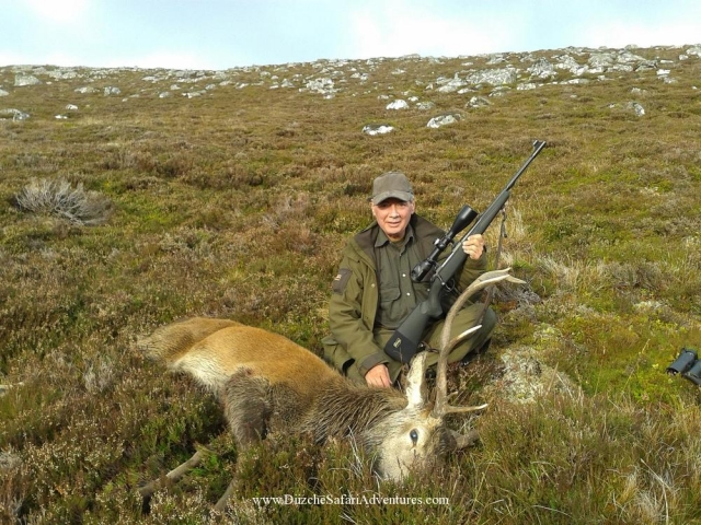 <font color=orange>Red Deer-Scotland</font> Red Deer-Scotland  European hunting photos  European hunting pictures