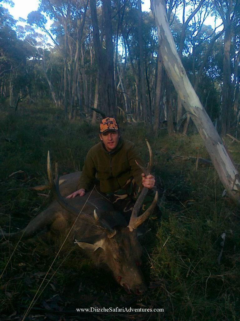 <font color=orange>SE Australia-Chris & Sambar Deer</font> SE Australia-Chris & Sambar Deer  Trophy hunting photos Australian dangerous game  hunting pictures dangerous game