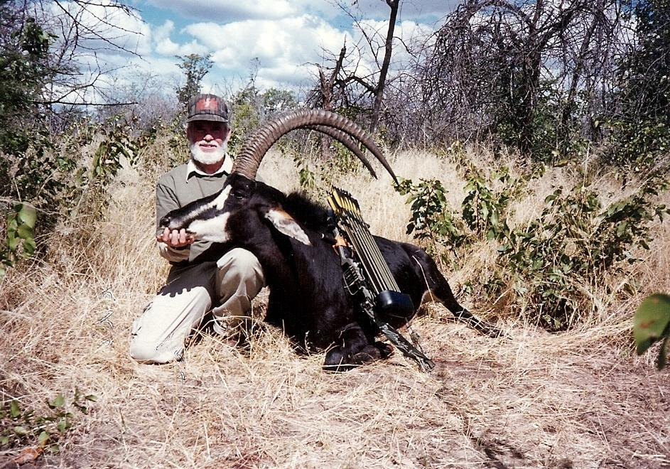 <font color=orange>Sable Antelope</font> Sable Antelope  Trophy hunting photos african plains game  hunting pictures plains game